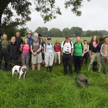 Group of translators on a walk